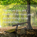 thankful_klein