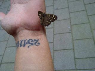 Vlinder op de hand van Patrick